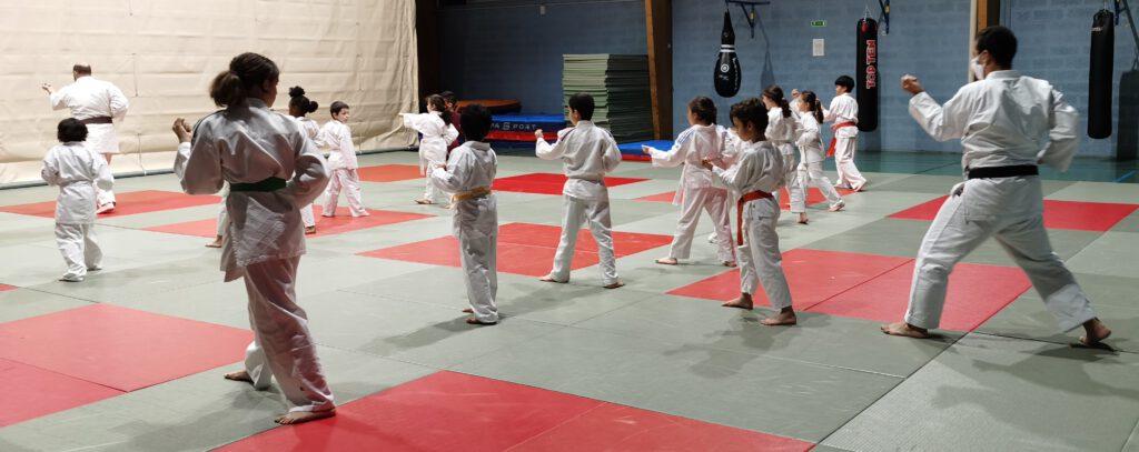 Stage Karate Dec 2020-2